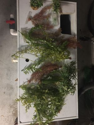 Aquarium /fish tank decorations for Sale in Tampa, FL