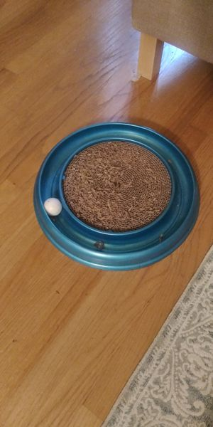 Cat scratcher toy with ball chaser for Sale in Gaithersburg, MD