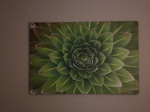 Large canvas photo 4ft by 32in for Sale in Phoenix, AZ