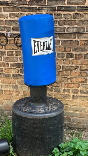 Punching bag for Sale in Chicago, IL