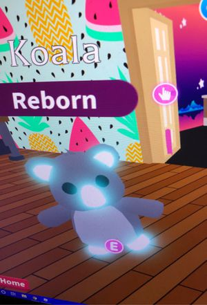 Roblox Adopt Me Neon Koala Ride and Fly for Sale in GRANT VLKRIA, FL