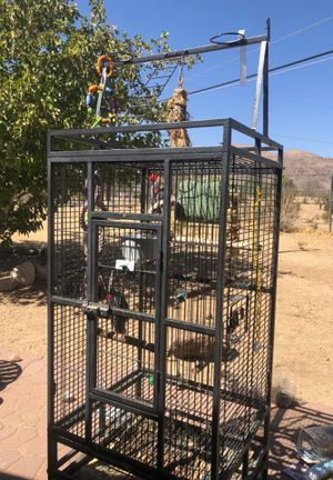 Parrot bird cage for Sale in Joshua Tree, CA