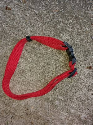 Large Red Dog 🐶 Collar for Sale in Renton, WA