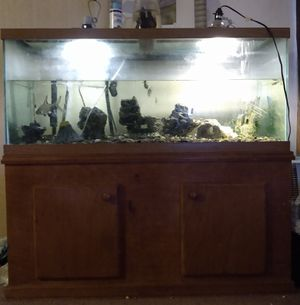 75 Gallon Fish Tank and Stand for Sale in Olympia, WA