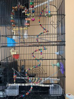 Double Bird Cage for Sale in Port Charlotte,  FL