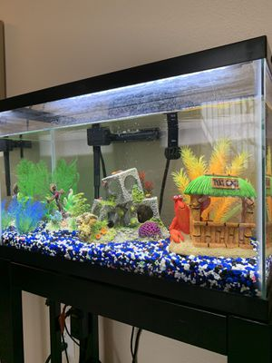 10 gallons aquarium with stand and all supplies for Sale in Redwood City, CA