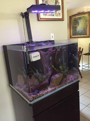 Fish tanks 60 gallons fresh water or sal water complete for Sale in Houston, TX