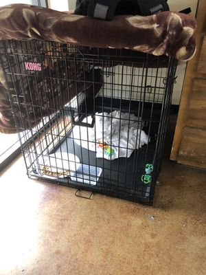 Kong Dog crate for large breed ... for Sale in Mansfield, TX