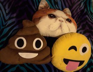 For Sale Emoji Pillows $3 each for Sale in Chicago, IL