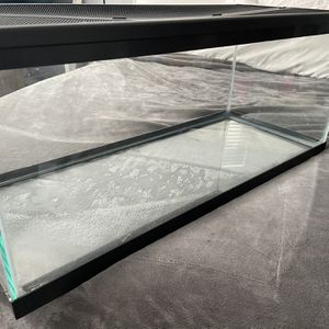 20 Gallon Glass Tank With Hinged Screen Lid for Sale in Cape Coral, FL