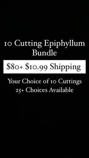10 Cutting Bundle for Sale in Sacramento, CA
