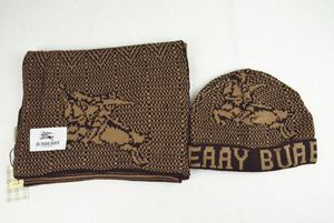 Burberry scarf and hat for Sale in Merrillville, IN