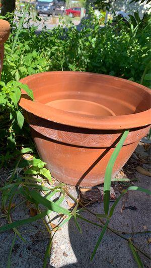 Flower pot for Sale in Port Richey, FL