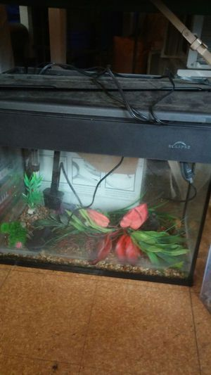 Eclipse 1 fish tank full setup 18 gallon for Sale in Portland, OR