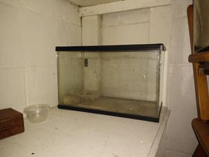 Reptile/fish tank for Sale in Grosse Pointe Park, MI