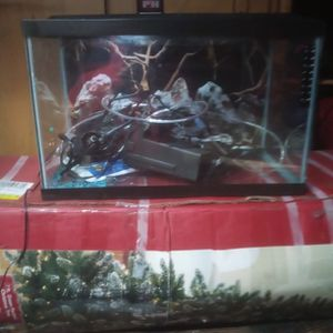 10 Gallon Fish Aquarium for Sale in Bremerton, WA