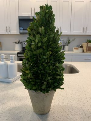 Pottery Barn topiary for Sale in Phoenix, AZ