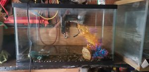 Used fish tanks for Sale in Tyler, TX