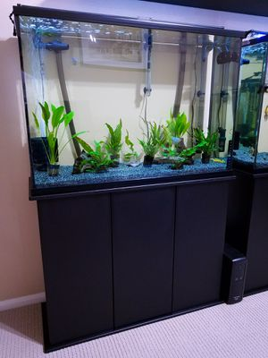 45 Gallon Tall Visio Aquarium w/Black Silicone, Stand & LED Light Bar for Sale in Perris, CA