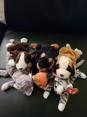 6 Beanie Babies - Dogs & Cats for Sale in Phoenix, AZ