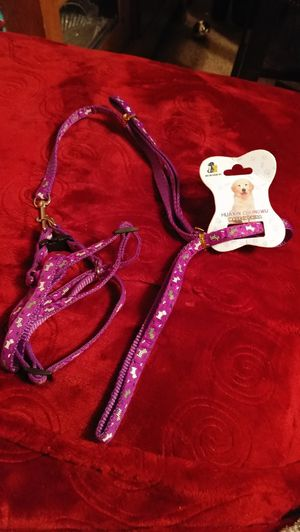 Dog leash for Sale in Salt Lake City, UT