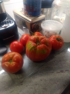 Heirloom organic Tomato for Sale in Bloomfield Hills, MI