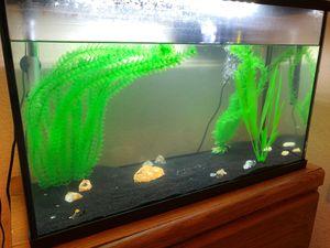 Fish tank for Sale in Saginaw, TX