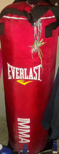 Punching bag for Sale in Magna, UT