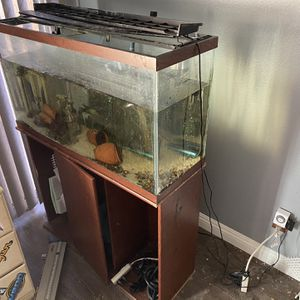 Medium Sized Fish Tank With Fish And Filter for Sale in Montclair, CA