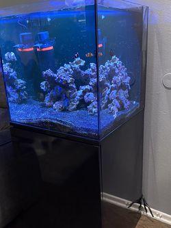 55gal Aquatic Saltwater aquarium for Sale in Los Angeles,  CA