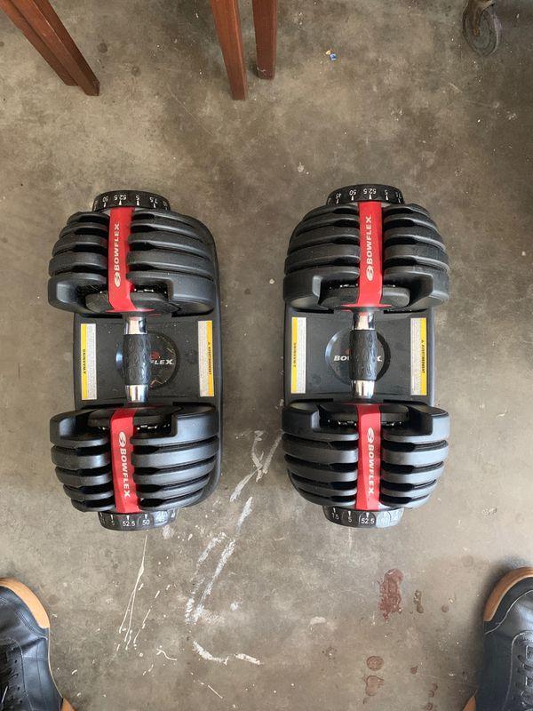 Workbench with Bowflex adjustable weights