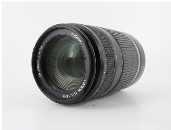 Canon EF-S 55-250mm f/4-5.6 IS Zoom Lens
