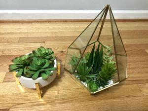 Faux succulents for Sale in Atlanta, GA