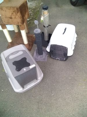 Cat stuff and dog cage for Sale in Boston, MA