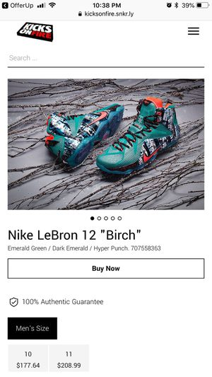 Nike Lebron 12 Birch (Excellent Condition) Limited Edition for Sale in St. Louis, MO