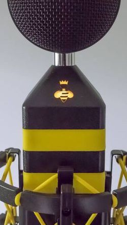 NEAT King Bee Microphone and Shockmount for Sale in Los Angeles,  CA