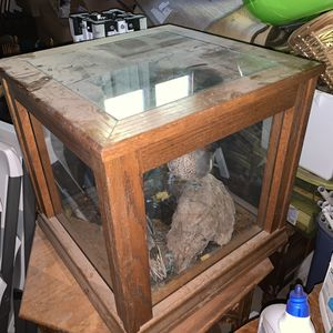 Custom made oak and glass estate curio cabinet. taxidermy antique tabletop showcase display. 50years Old for Sale in Orange, CA