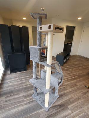 Condo cat for Sale in Seattle, WA