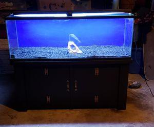 60 gallon aquarium for Sale in Hesperia, CA