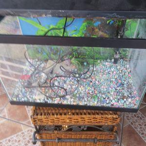 Fish Tank for Sale in El Monte, CA