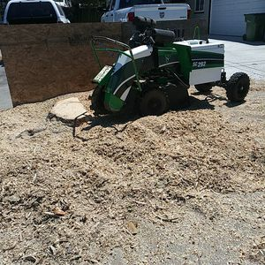 Tree stump removal for Sale in Sunnyvale, CA