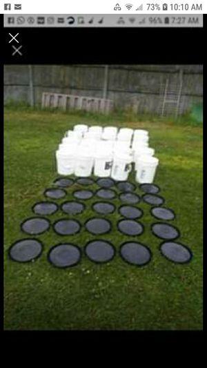 5 gallon buckets & lidds for Sale in Muskegon, MI