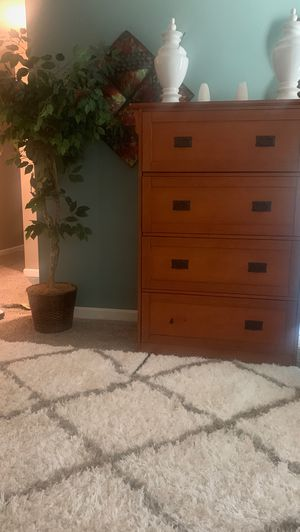 File cabinet and plant for Sale in Waldorf, MD