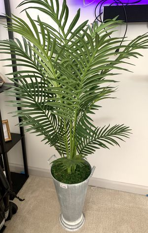 Artificial green plant for Sale in Bowie, MD