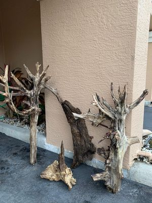 Coastal Raw Driftwood in 4 sizes for Sale in Tampa, FL