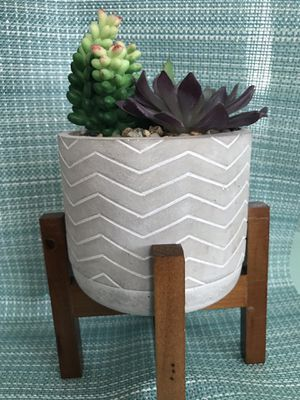 "#2 7"" artificial succulent on wooden stand for Sale in Madera, CA"