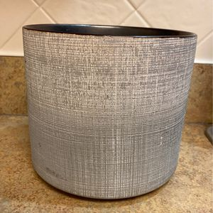 Plant Pot for Sale in Bethesda, MD