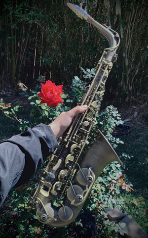 P.Mauriat Alto Saxophone for Sale in Webberville, TX