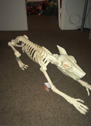 Halloween dog decoration for Sale in Peoria, AZ
