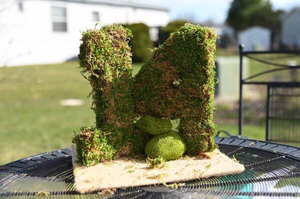 Moss Covered Wedding/ Outdoor Nature Event Table Numbers